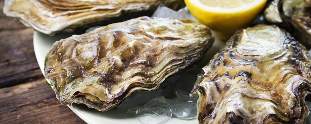 Comment bien conserver vos huîtres ?