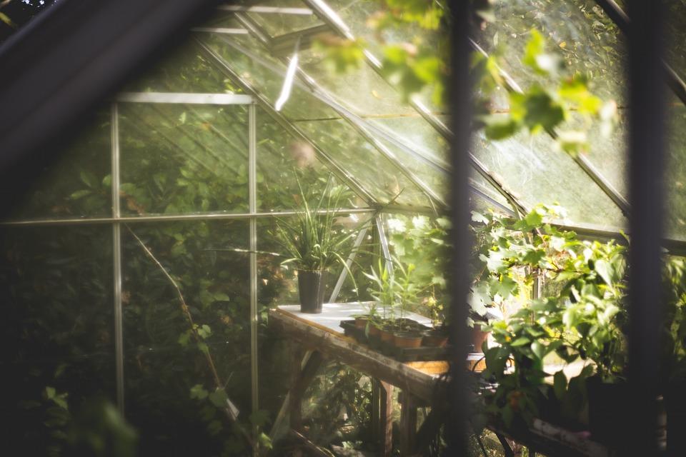 Une serre dans votre jardin